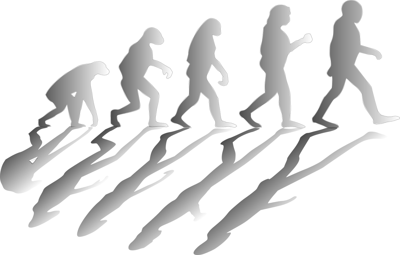 el fraude de la evolucion