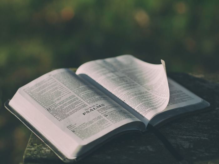 sabiduría para calvinistas