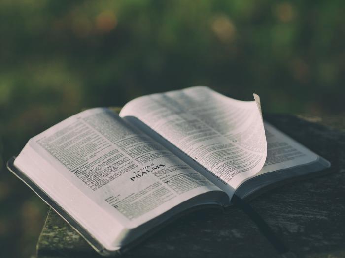 pasos para interpretar la Biblia