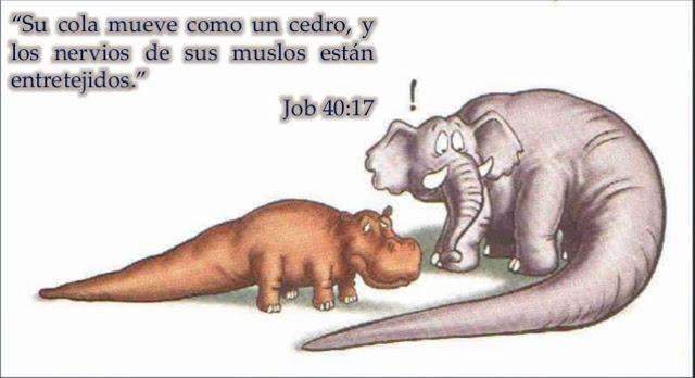 dinosaurios en la biblia