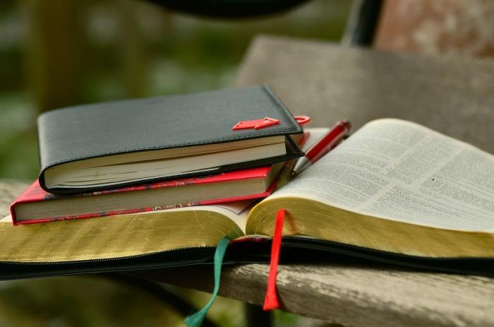 libros calvinistas
